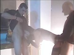 Compilation Of Scenese From Porn With Cum Hungry Milfs